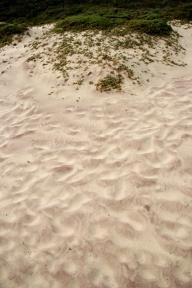 Nisip mov