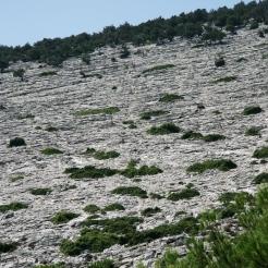 Theologos, Mountain