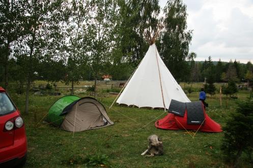 Piatra Șoimului, ferma de echitație, camping