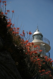 Farul Port Soller