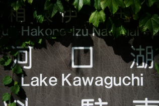 Lacul, indicator