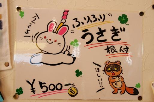 0237_Hakone_Fuji