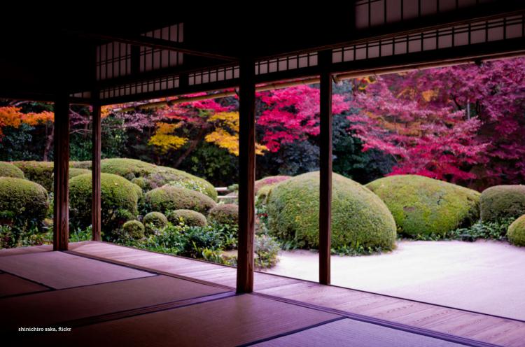 Flickr user: shinichiro saka - Fall color creep into room.