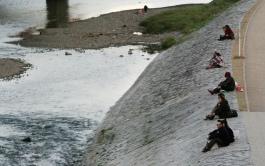 On the Katsura River banks