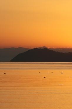 7_Makino_Lake_Biwa