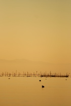 9_Makino_Lake_Biwa
