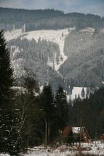 Glodu_54