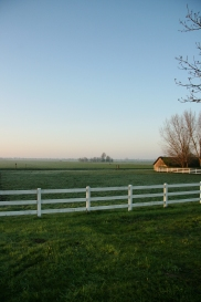 Montfoort, the polder